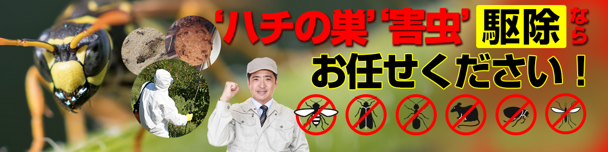 ハチの巣・害虫駆除ならPDS北関東!